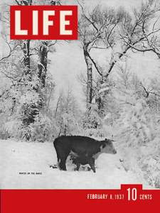 LIFE Magazine cover 2/8/1937 Winter on the range